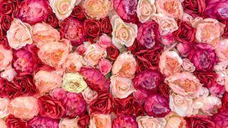 Pitate se što kupiti partnerici za Valentinovo? Imamo super ideje